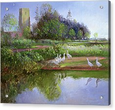 Geese At Sundown Acrylic Print by Timothy Easton