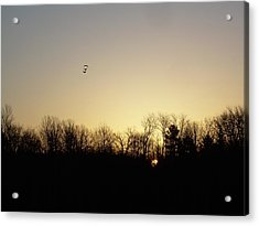 Acrylic Print featuring the photograph Geese At Sunrise by Kent Lorentzen