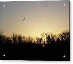 Geese At Sunrise Acrylic Print by Kent Lorentzen