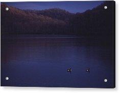 Geese On Radnor Lake Acrylic Print by Randy Muir