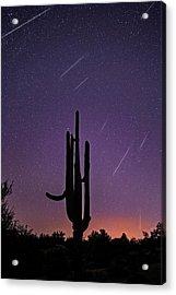 Geminid Meteor Shower #1, 2017 Acrylic Print