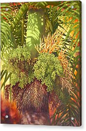 Generations Palm Acrylic Print by Monica Linville