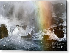 Acrylic Print featuring the photograph Genesis Series II by Jan Piller