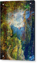 Genesis Acrylic Print by Tom Romeo