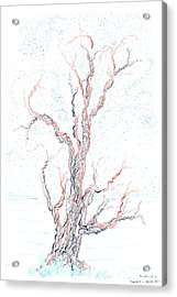 Genetic Branches Acrylic Print by Regina Valluzzi