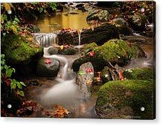 Gentle Cascades Of Autumn  Acrylic Print