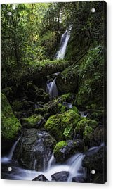Gentle Cuts Acrylic Print by James Heckt