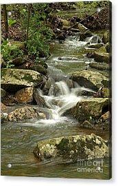 Gentle Falls Acrylic Print