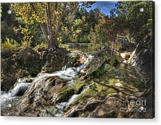 Gentle Mountain Stream Acrylic Print by Tamyra Ayles
