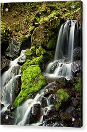 Gentle Summit Creek Acrylic Print