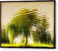 Gentle Sun  Acrylic Print