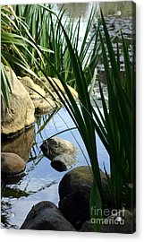 Gentle Water Acrylic Print