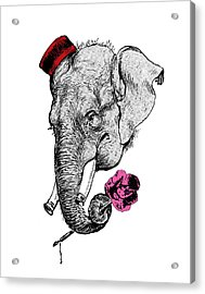 Gentleman Elephant With Pink Rose Acrylic Print