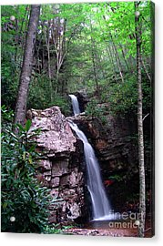 Gentry Creek - Double Falls Acrylic Print