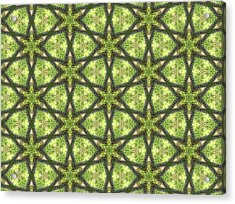 Geo Stars In Greens Acrylic Print