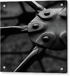 Acrylic Print featuring the photograph Geodome Climber by Richard Rizzo