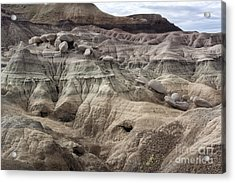 Geology Lesson 2 Acrylic Print by Melany Sarafis