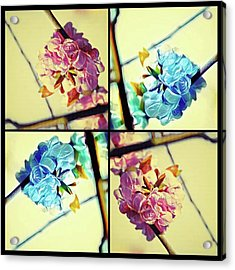 Geometric Blossoms Acrylic Print