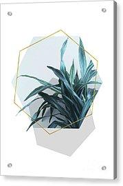 Geometric Jungle Acrylic Print