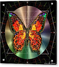 Geometron Fyr Lepidoptera Acrylic Print