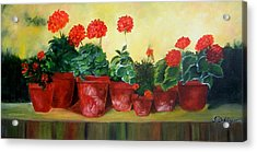 Acrylic Print featuring the painting Geraniums In A Row-- Sold by Susan Dehlinger