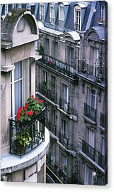 Geraniums - Paris Acrylic Print