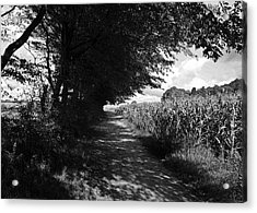 German Path Black And White Acrylic Print by Edward Myers