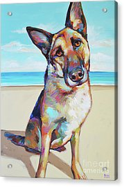 German Shepard On The Beach Acrylic Print