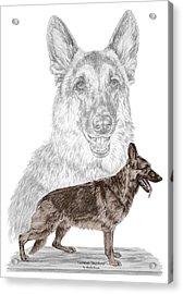 German Shepherd Art Print - Color Tinted Acrylic Print by Kelli Swan