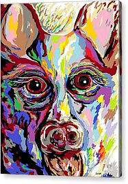 German Shepherd Acrylic Print by Eloise Schneider