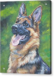 German Shepherd Head Study Acrylic Print