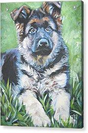 German Shepherd Puppy Acrylic Print by Lee Ann Shepard