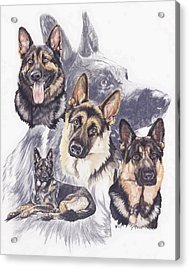 German Shepherd Medley Acrylic Print