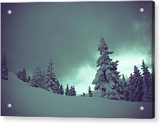 German Winter Landscape Acrylic Print by Happy Home Artistry