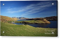 Gesto Bay And The Cuillins Acrylic Print by Maria Gaellman