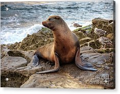 Acrylic Print featuring the photograph Get My Good Side by Eddie Yerkish