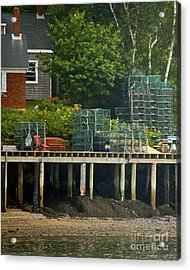 Getting Ready To Lobster Acrylic Print by Faith Harron Boudreau