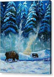 Geysers And Bison Acrylic Print