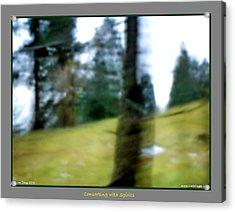 Ghost Behind Tree Acrylic Print by Jane Tripp