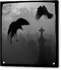 Ghost Crows Acrylic Print