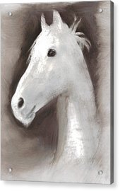 Acrylic Print featuring the painting Ghost Horse by FeatherStone Studio Julie A Miller