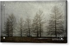 Acrylic Print featuring the mixed media Ghost Trees by Terry Rowe