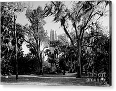 Ghostly Bok Tower Acrylic Print by David Lee Thompson