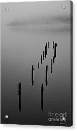 Ghosts In The Mist Acrylic Print by Winston Rockwell