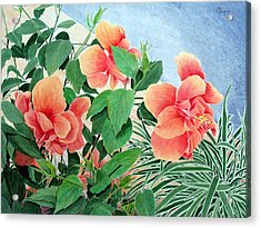 Giant Hibiscus Acrylic Print by Colleen Marquis