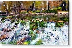 Giant Springs 1 Acrylic Print