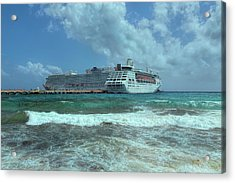 Acrylic Print featuring the photograph Giants Of The Sea by John M Bailey