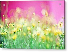 Giddy In Pink Acrylic Print