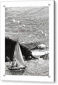 Gig Harbor Sailing School Acrylic Print by Jack Pumphrey