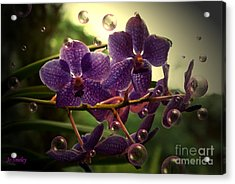 Giggles Acrylic Print by Joanne Smoley